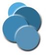 Vida-Blue Solutions